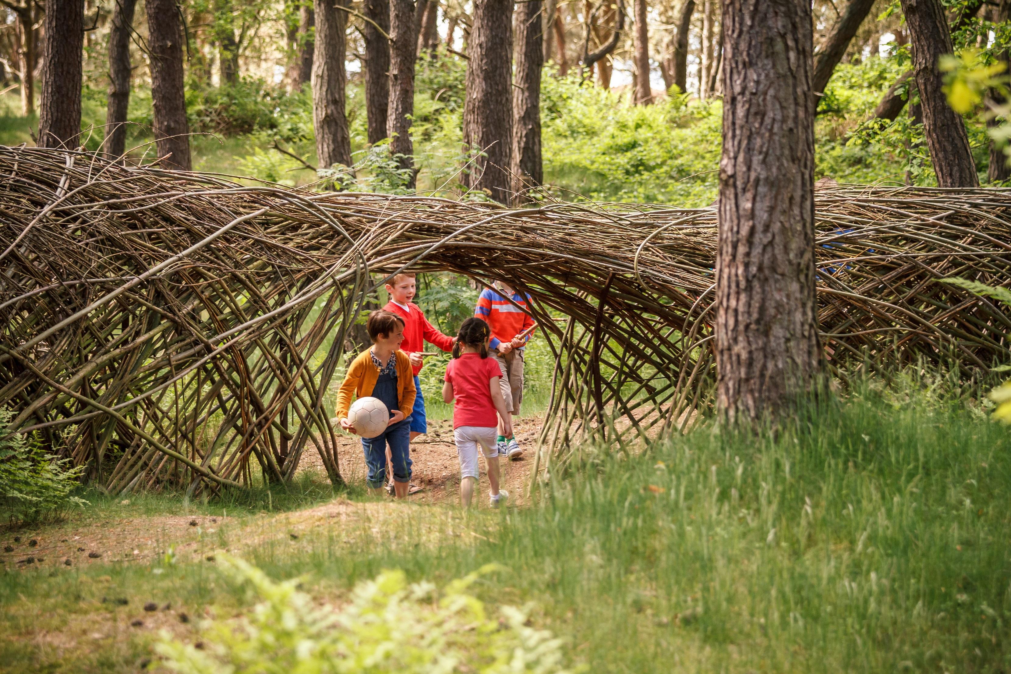 Kinderen spelen bos